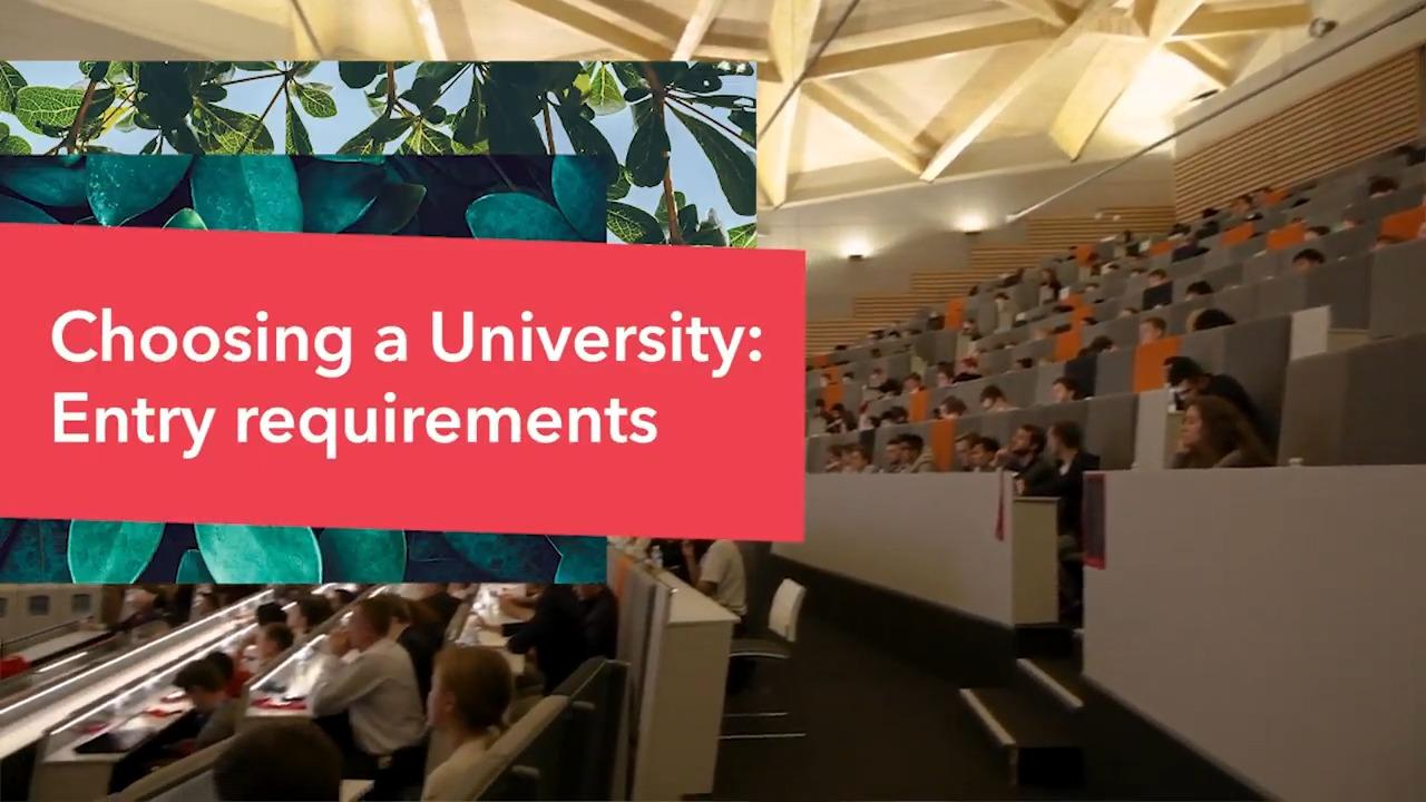 What are the entry requirements for university?